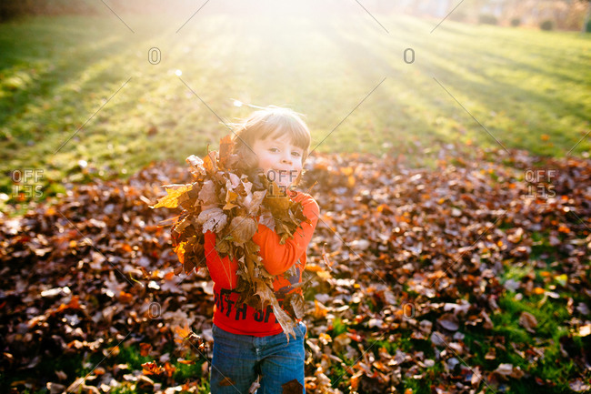 Boy carrying leaves in the sunshine