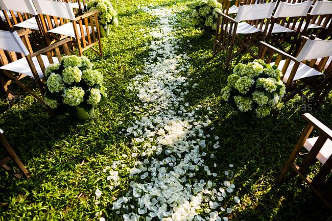 Outdoor wedding setup with petal strewn aisle