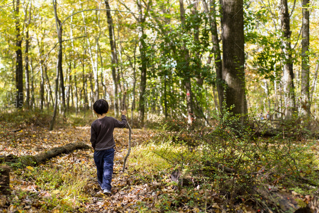Boy hiking with a walking stick