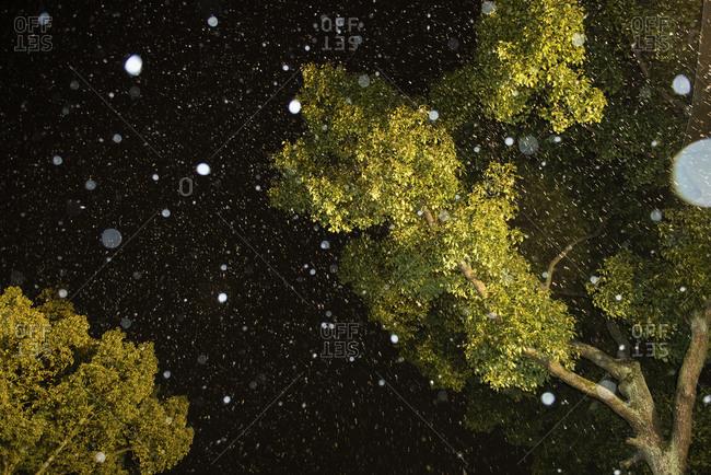 Snowfall at night in Kobe-shi, Japan