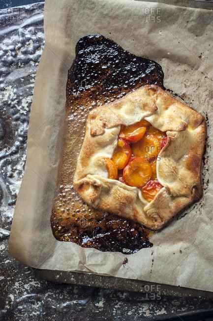 A cognac soaked apricot tart