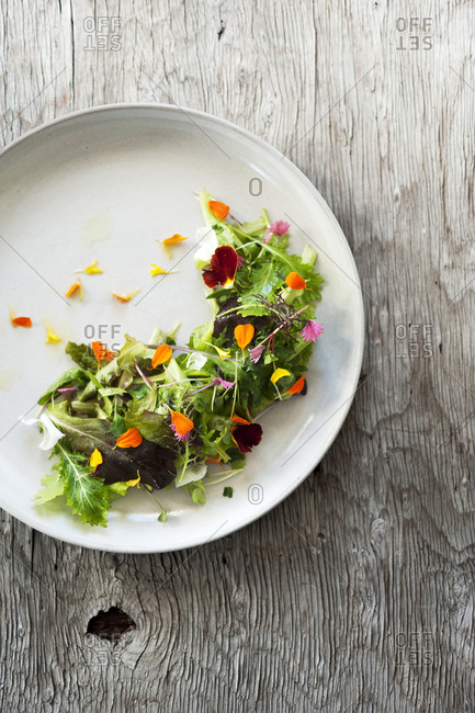 Butter lettuce salad with edible flowers and fines herbs on a lemon vinaigrette