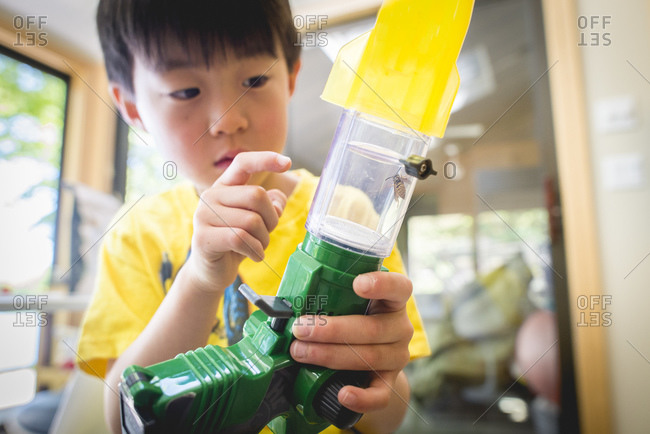 Child examining a bug in an insect viewer