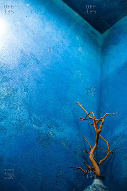 Decoration in a blue corner