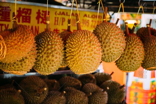 Durian fruits hanging at a Malaysian market