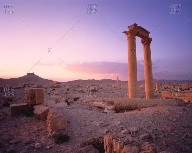 Palmyran columns in the Syrian desert