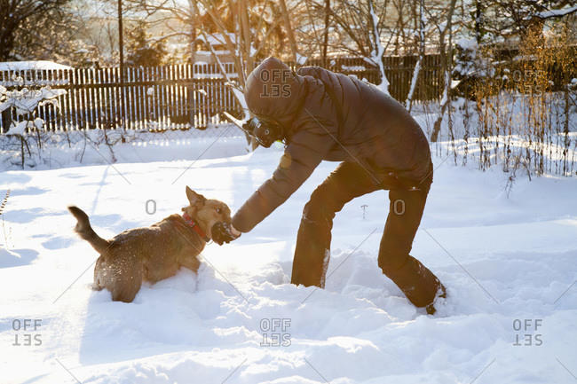 Man photographing and playing with dog in snow
