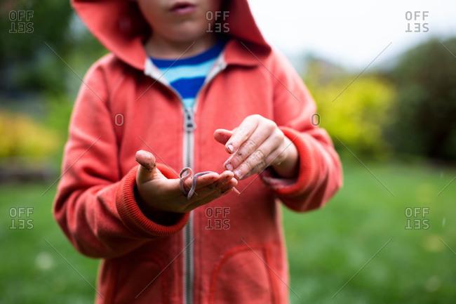 Boy holding earthworm