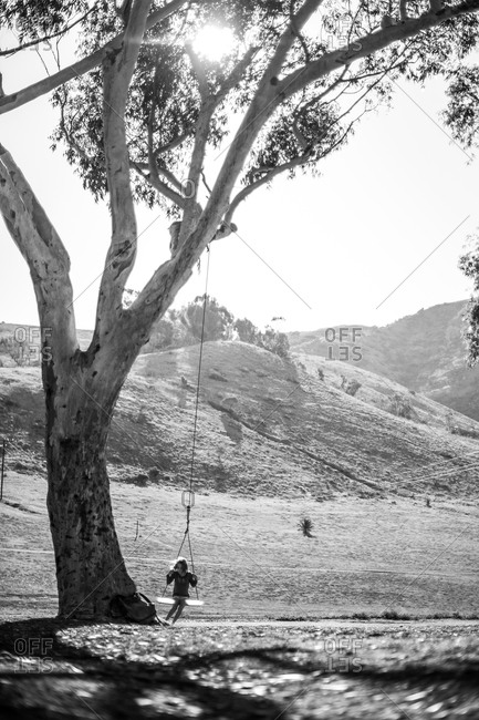 Girl on tree swing from a distance