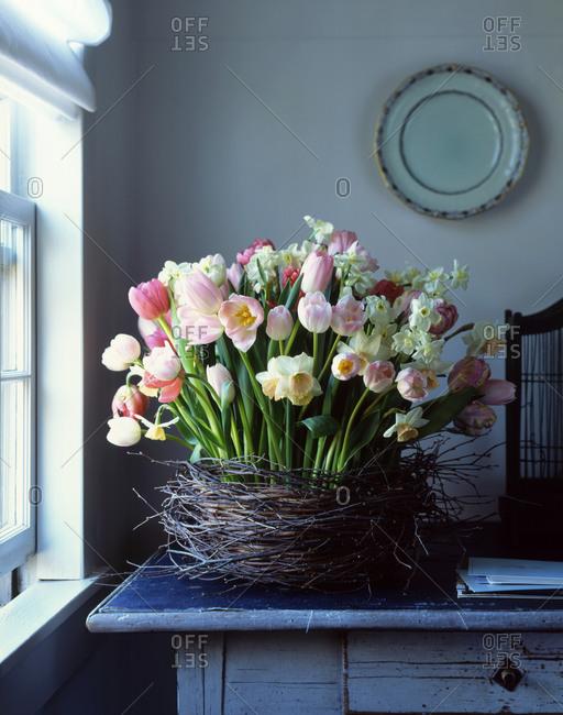 Spring flowers in a twig basket