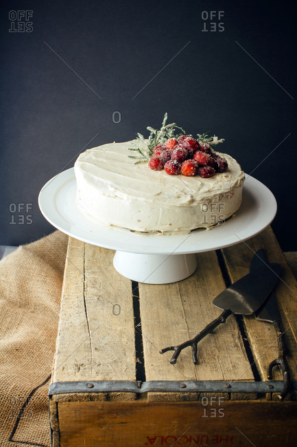 Chocolate cake with white frosting and candied rosemary and cranberries with black background