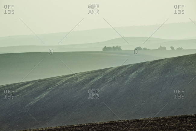 Agricultural fields with green tones on a foggy morning in South Moravia, Vyskov, Czech Republic