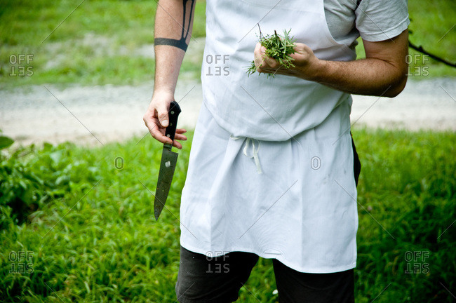 Chef holding a sharp knife and a bunch of herbs