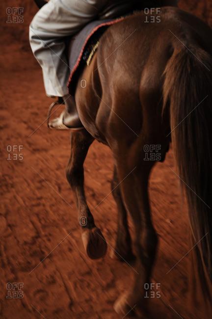 Man riding a brown horse