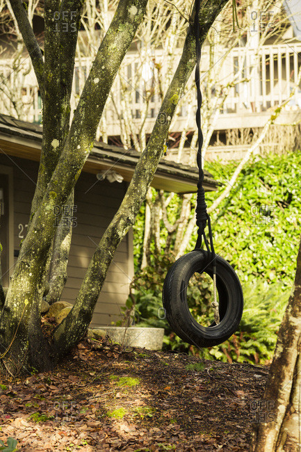 Tire swing, Vancouver