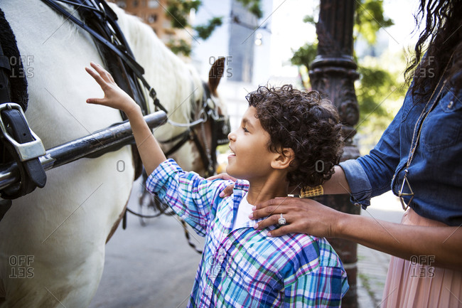 Boy petting a carriage horse
