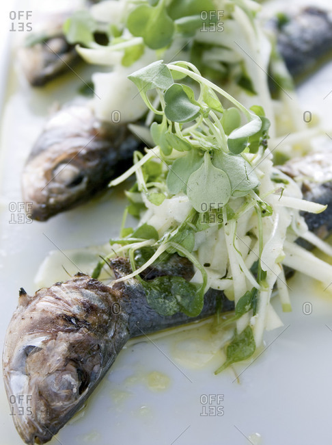 Roasted fish served with microgreens