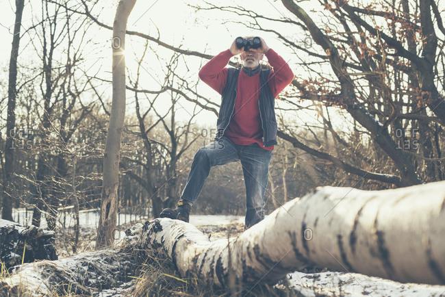 Senior man birdwatching in a forest
