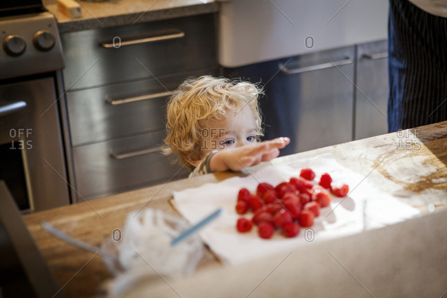 Child reaching for raspberries on a kitchen counter