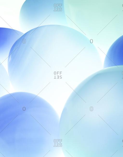 Studio shot of blue balloons