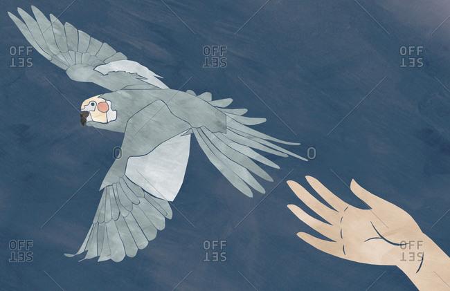 Illustration of bird flying away from hand