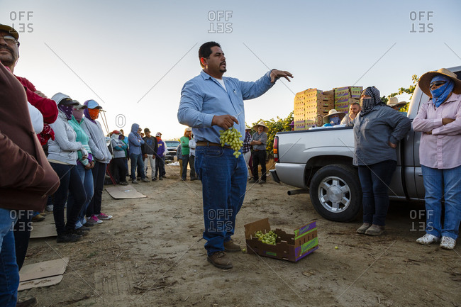 Bakersfield, California, USA - August 15, 2014: Man briefing workers before a harvest at a vineyard