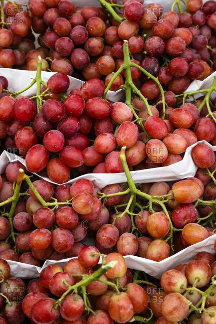 Packs of freshly harvested Red Globe grapes