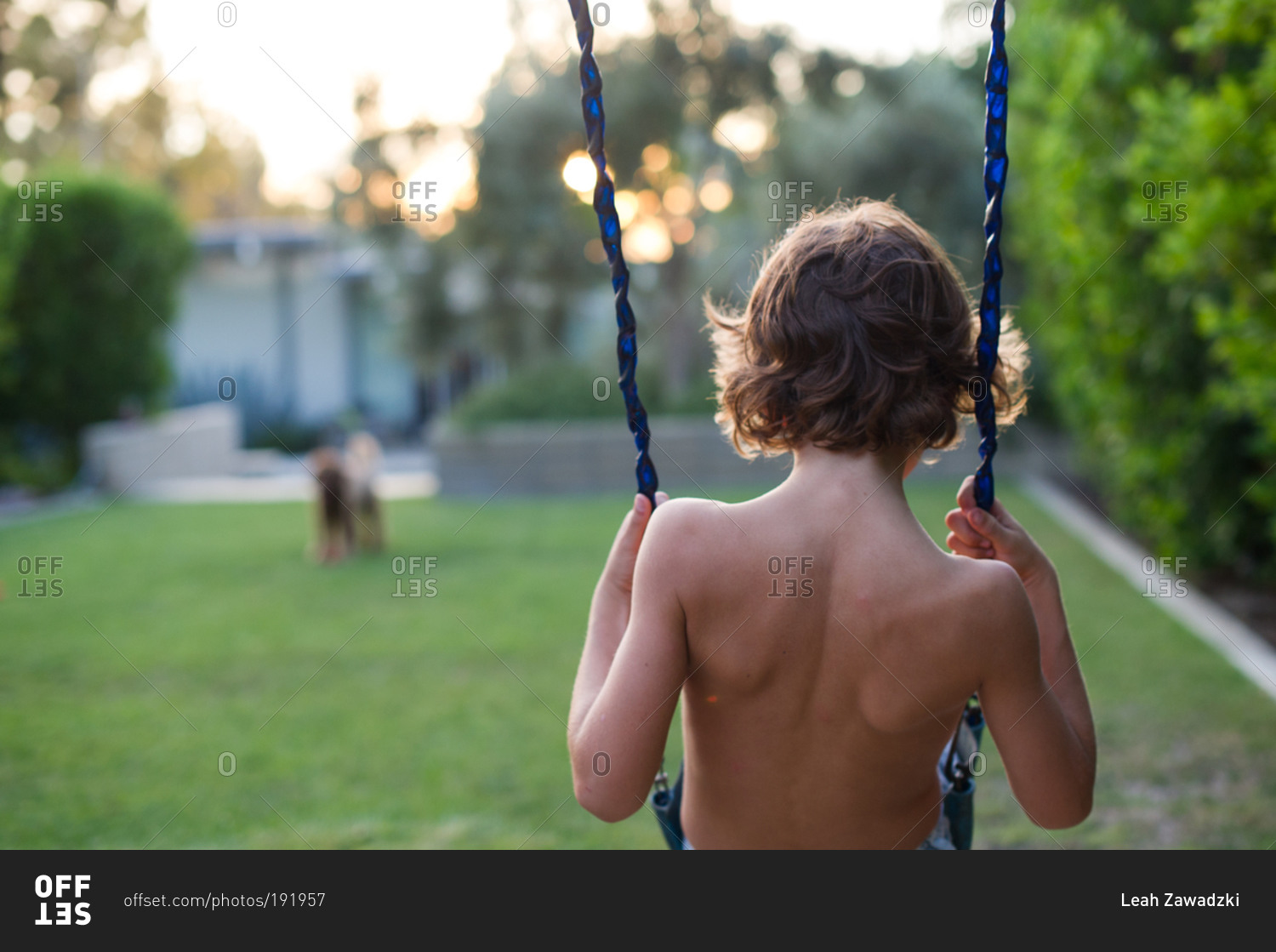 shirtless boy on a swing in backyard stock photo offset