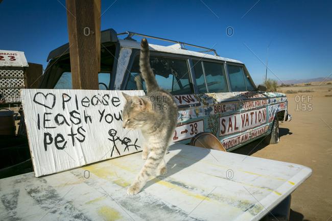 Salton Sea, California, USA - February 4, 2015: Cat and decorated vehicle at Salvation Mountain