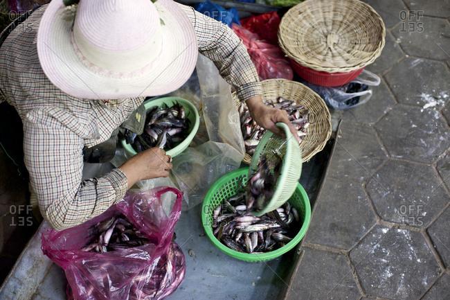 Woman selling fish at a market