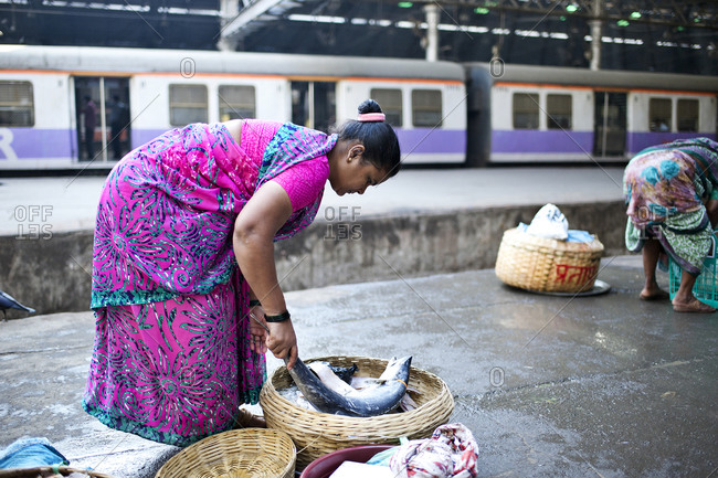 Mumbai, India - February 6, 2015: Woman putting fresh fish in a basket