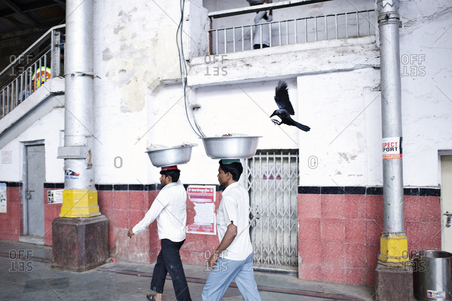 Mumbai, India - February 7, 2015: A crow follows two men carrying fish