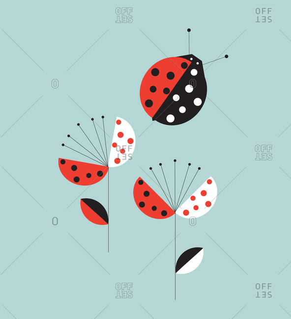 Ladybug and two blooming flowers on a blue background
