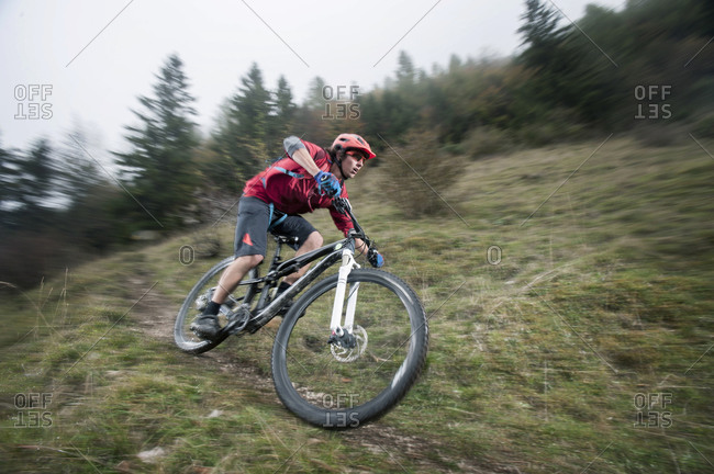 Mountain biker riding in a forest, Bavaria, Germany
