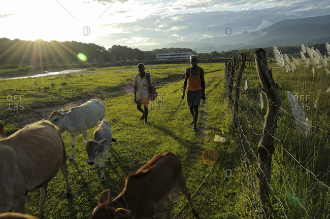 Farmers returning home from a field in Sukna, West Bengal, India
