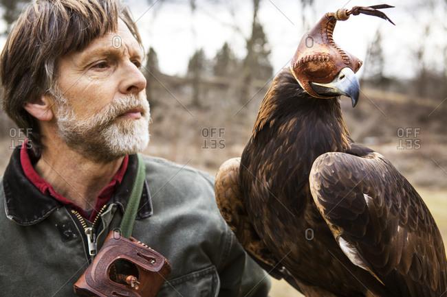 A bird handler and his golden eagle