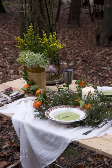 Bowl of soup on outdoor picnic table with natural decoration