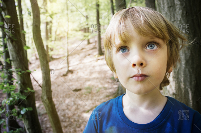 Young boy gazes upward in the woods
