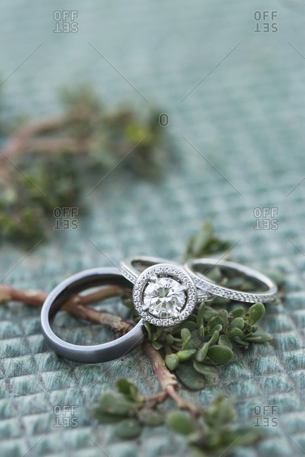 Wedding rings set on a branch