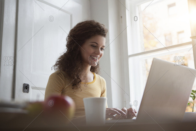 Smiling young woman at home using laptop