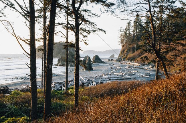 Ruby Beach at dusk in Olympic National Park, Washington