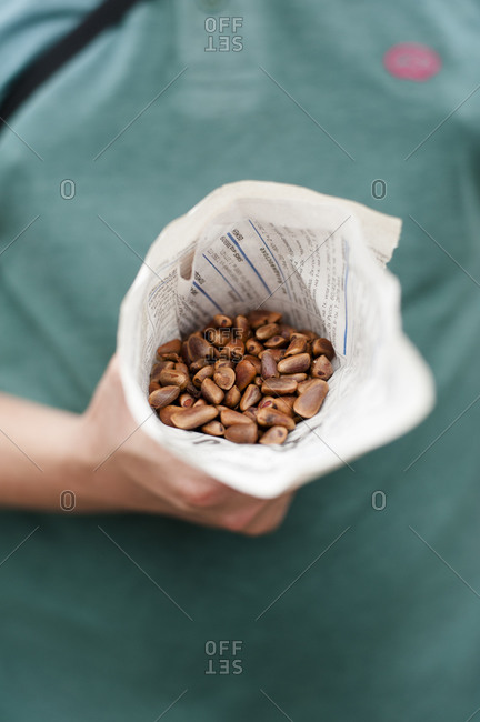 A bag of raw, unpeeled pine nuts