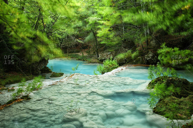 Urederra river flowing in forest