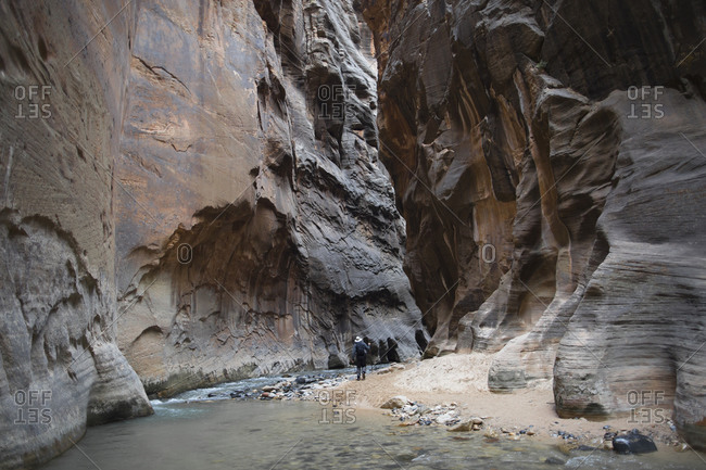 The Narrows in Zion National Park remains one of the most popular hikes