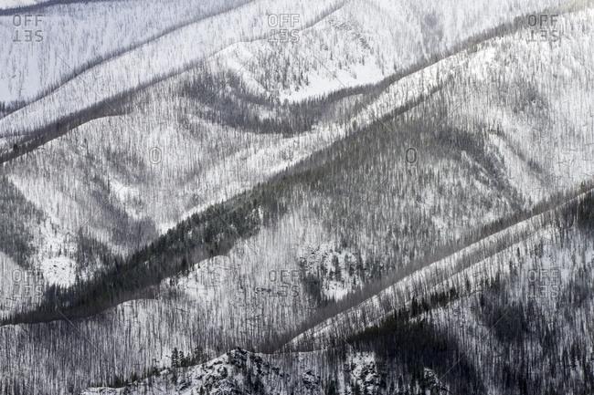 Butte Cabin Ridge sits above Ranch Creek in the John Long Mountains near Rock Creek, Montana
