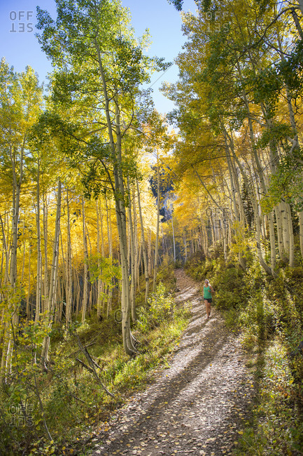 Woman trail running on a sunny fall day