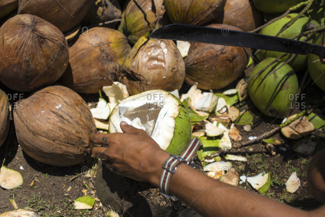 View of a man opening coconut