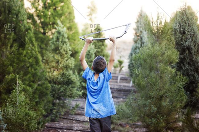 Boy walking through tree farm holding up saw