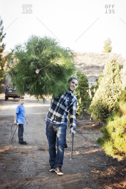 Man carrying pine tree by son