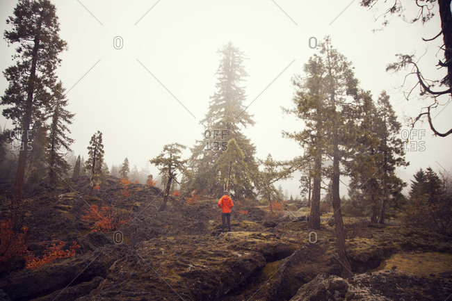 Man standing in misty, rocky forest